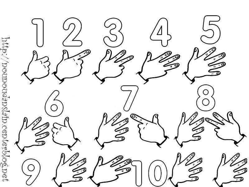 Fabulous Apprendre a compter avec les doigts BB88